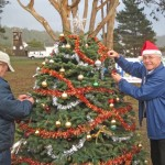 12-10 Xmas Tree 374 Guenter places decoration-r